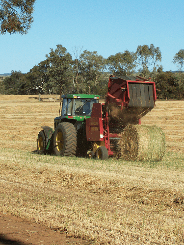 Round Baling of Oaten Hay - Harvey Hay Sales covering Hartley / Strathalbyn / Fleurieu / Adelaide Hills / Fleurieu & Murray Mallee