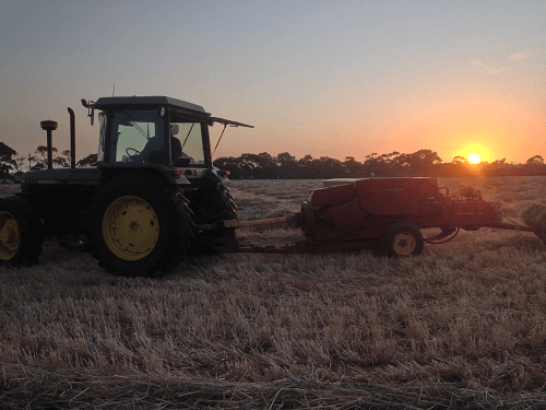 Baling on dusk for optimum moisture levels for Wheaten Hay - Harvey Hay Sales covering Hartley / Strathalbyn / Fleurieu / Adelaide Hills / Fleurieu & Murray Mallee
