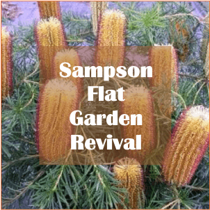 Sampson Flat Garden Revival